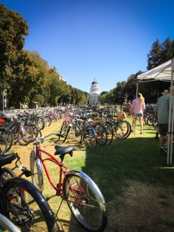 Bike Valet at the Sac Farm-to-Fork Festival